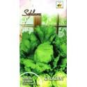 Gartensalat 'Saladin' 0,5 g