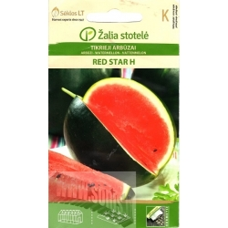 Watermelon 'Red Star' H, 10 seeds