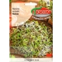 Garten-Senfrauke 5 g, für Sprossung
