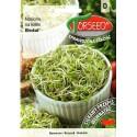 Cavolo broccolo 10 g, per germogli