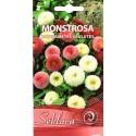 Common daisy 'Monstrosa', mix 0,1 g