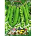 Gartenerbse 'Utrillo' 50 g