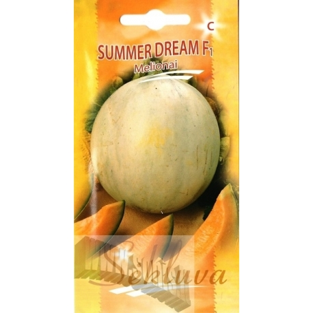 Melone 'Summer Dream' F1, 10 Samen