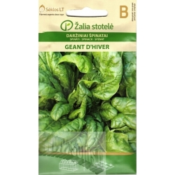 Spinach 'Geant D'Hiver' 3 g