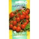 Tomate 'Luciplus' H, 10 Samen