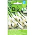 Cipolla 'Witte van Lissabon' 1,5 g