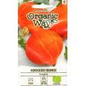 Lielaugļu ķirbji 'Hokkaido Orange' 2 g