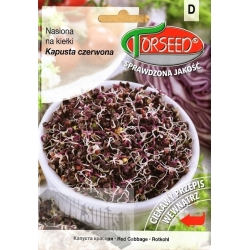 Red Cabbage 10 g