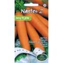 Carrot 'Nantes 2' 4 m