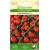 Pomidorai valgomieji 'Gardenberry' H, 10 sėklų