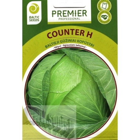 White cabbage 'Counter' H, 45 seeds