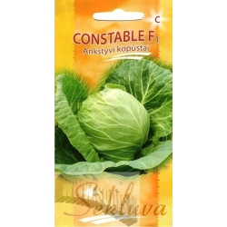 White cabbage 'Constable' H, 40 seeds