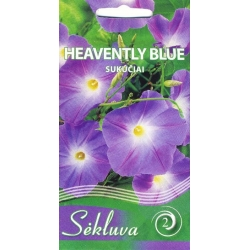Himmelblaue Prunkwinde 'Heavenly Blue' 1 g