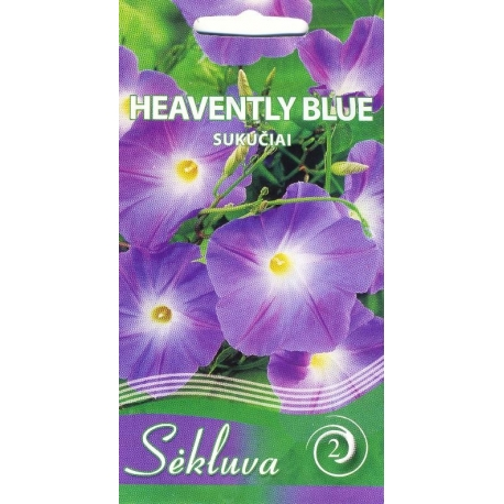 Morning Glory 'Heavenly Blue' 1 g