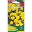 Serentis didysis 'Cupido Yellow' 0,3 g