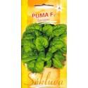 Spinach 'Puma' H, 3 g