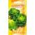Salotos romaninės 'Coventry' 25 sėklos
