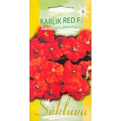 Petunia 'Karlik red' H, 25 semi