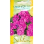 Petunia 'Karlik violet' H, 25 semi