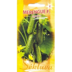 Cucumber 'Merengue' H, 20 seeds