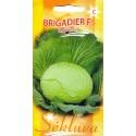 White cabbage 'Brigadier' H, 40 seeds