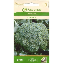 Broccoli 'Lucky' H, 30 seeds