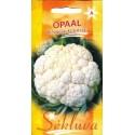 Цветная капуста 'Opaal' 30 семян