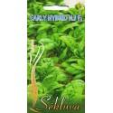Szpinak warzywny 'Early Hybrid No 7' H, 5 g